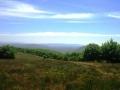 apd04lim1- paysage de haute provence