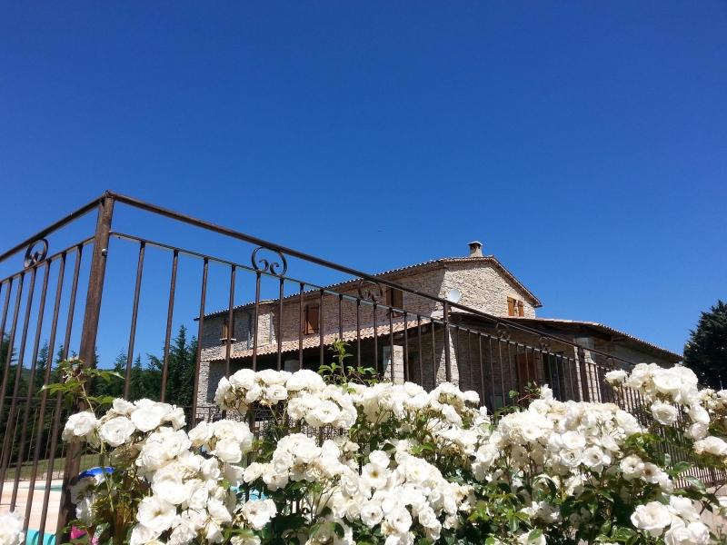 apd04lit- sous le ciel de provence