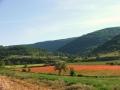 apd04lrg1-vacances a la campagne